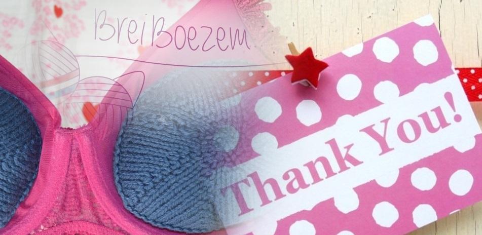 BreiBoezem-bedankt-donaties